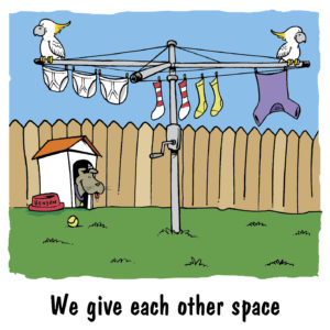 We give each other space